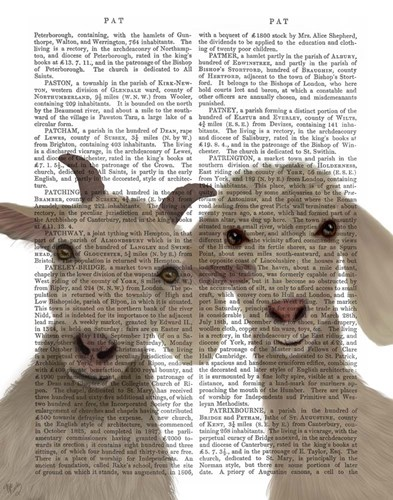 Goat Duo, Looking at You Book Print Art Print by Fab Funky
