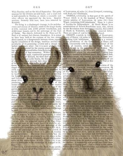 Llama Duo, Looking at You Book Print Art Print by Fab Funky