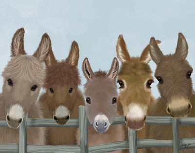 Donkey Herd at Fence Art Print by Fab Funky