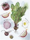 Food Sketches II Art Print