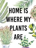 Plant Love VI Art Print