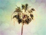 Palm Trees III Art Print