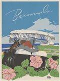 See South America VI Art Print