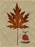 Autumn Leaf I Art Print