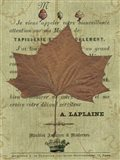 Autumn Leaf II Art Print