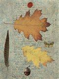 Autumn Leaf III Art Print