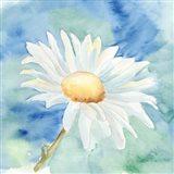 Daisy Sunshine II Art Print