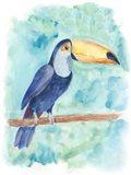 Sweet Tropical Bird I Art Print