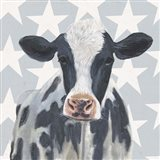 Patriotic Farm II Art Print
