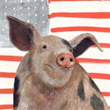 Patriotic Farm IV Art Print