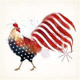Rooster Fireworks I Art Print