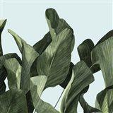 Celadon Palms II Art Print