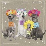 Fancypants Wacky Dogs V Art Print