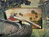 Pelican Paradise I Art Print