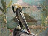 Pelican Paradise II Art Print