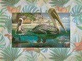 Pelican Paradise V Art Print