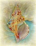 Aquatica I Art Print
