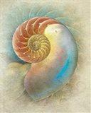 Aquatica II Art Print