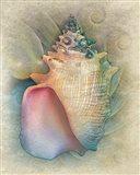 Aquatica IV Art Print