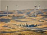 Farm & Field IV Art Print