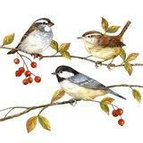 Birds & Berries I Art Print