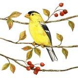 Birds & Berries II Art Print