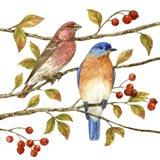 Birds & Berries IV Art Print