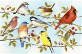 Birds & Berries V Art Print