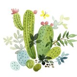 Happy Cactus III Art Print