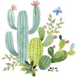 Happy Cactus IV Art Print