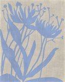 Dusk Botanical VI Art Print