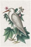 Catesby Heron III Art Print