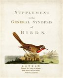 General Synopsis of Birds Art Print