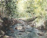 Virginia Woods IV Art Print