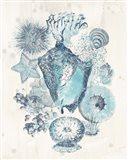 Coastal Melange III Art Print