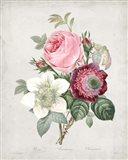 Bouquet IV Art Print