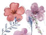 Spring Glory I Art Print