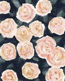 Peach Petals II Art Print