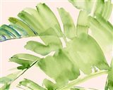 Peachy Palms II Art Print