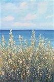 Flowers at the Coast I Art Print