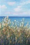 Flowers at the Coast II Art Print