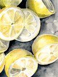 Lemon Slices II Art Print