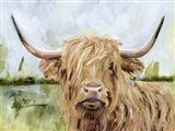 Highland Grazer I Art Print