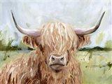 Highland Grazer II Art Print