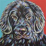 Canine Buddy I Art Print