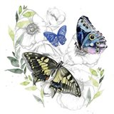 Butterfly Floral I Art Print
