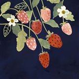 Fresh Fruit I Art Print