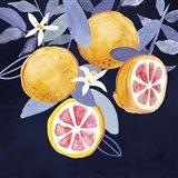 Fresh Fruit III Art Print