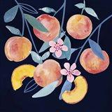 Fresh Fruit IV Art Print