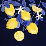 Fresh Fruit V Art Print
